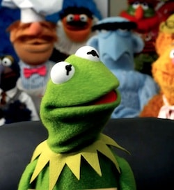 the-muppet-look-effects-quadro-graphics