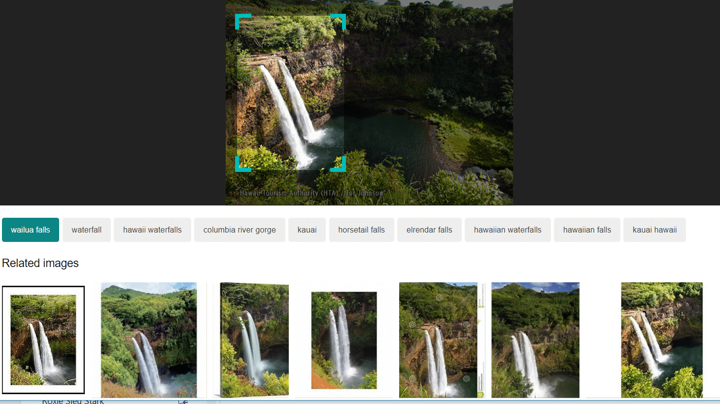 Using Bing's image within image search, you can select a portion of a picture, see similar images and find out what the picture depicts.